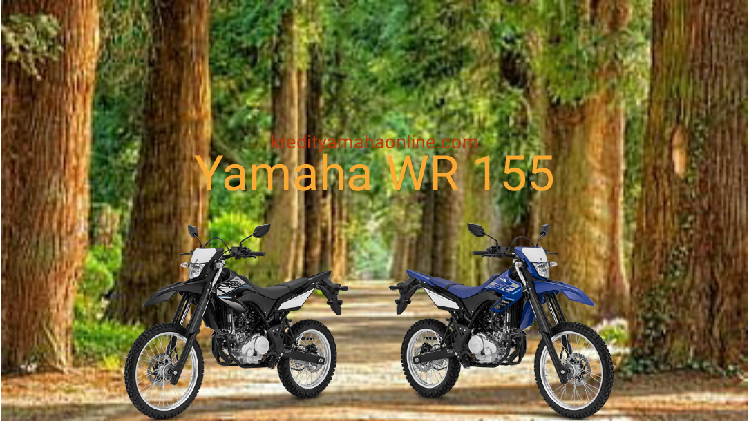 Promo Yamaha WR 155 R